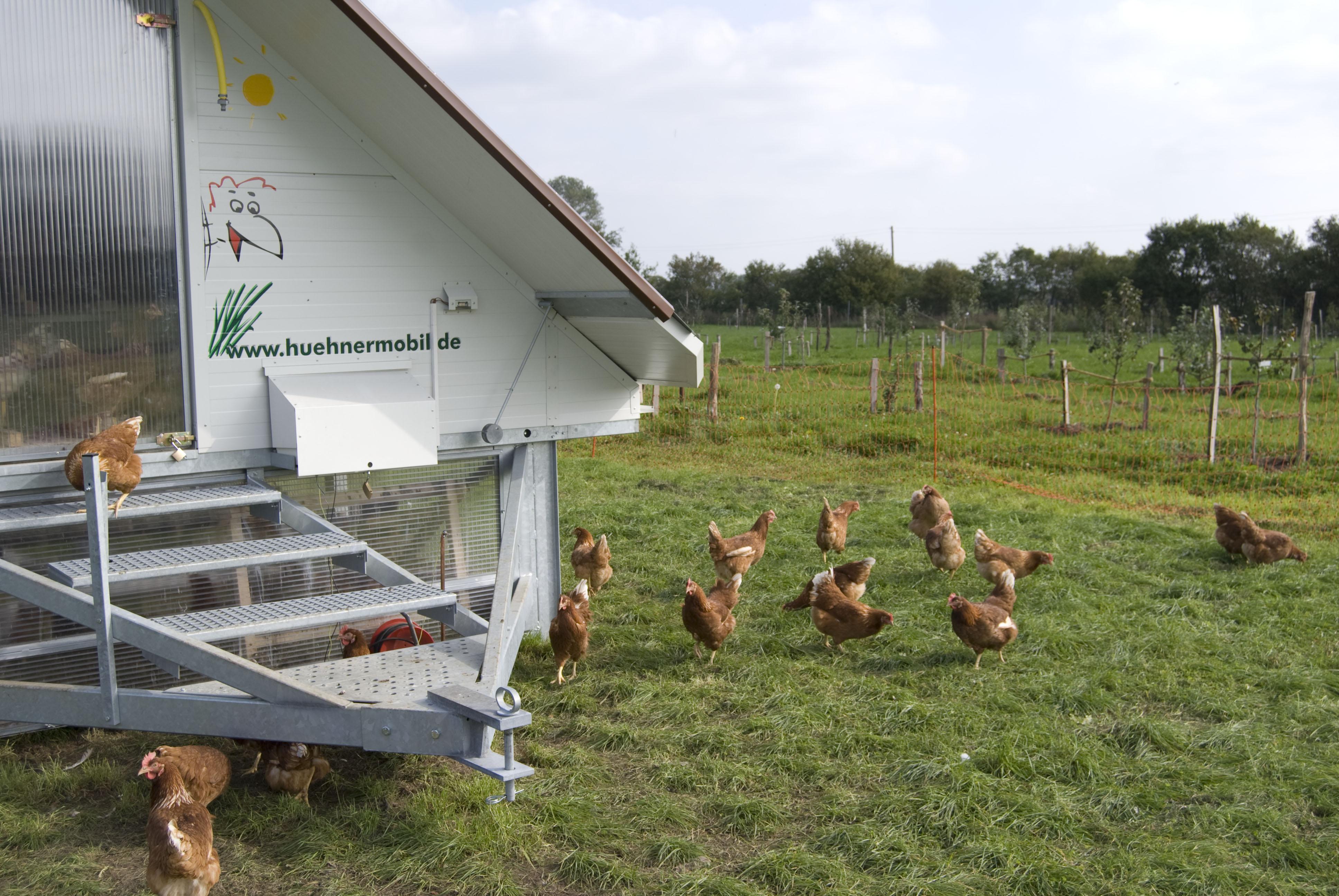 ELSTER-WERKSTÄTTEN gemeinnützige GmbH