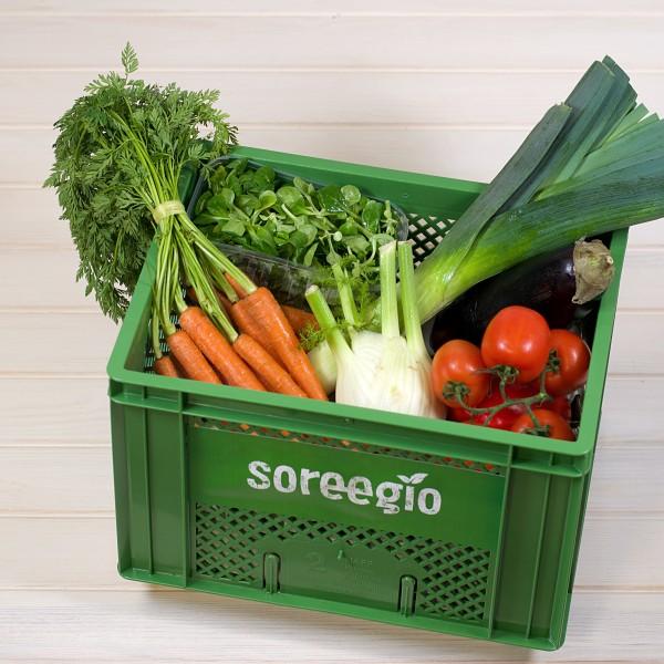 BOX - Gemüse normal