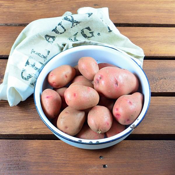 BIO - Kartoffeln Rosara vorw. festkochend 2,5 kg