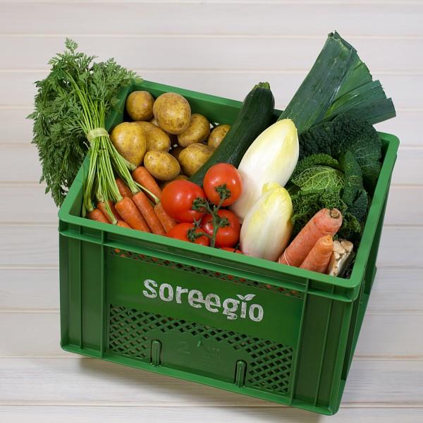 BOX - Gemüse maxi