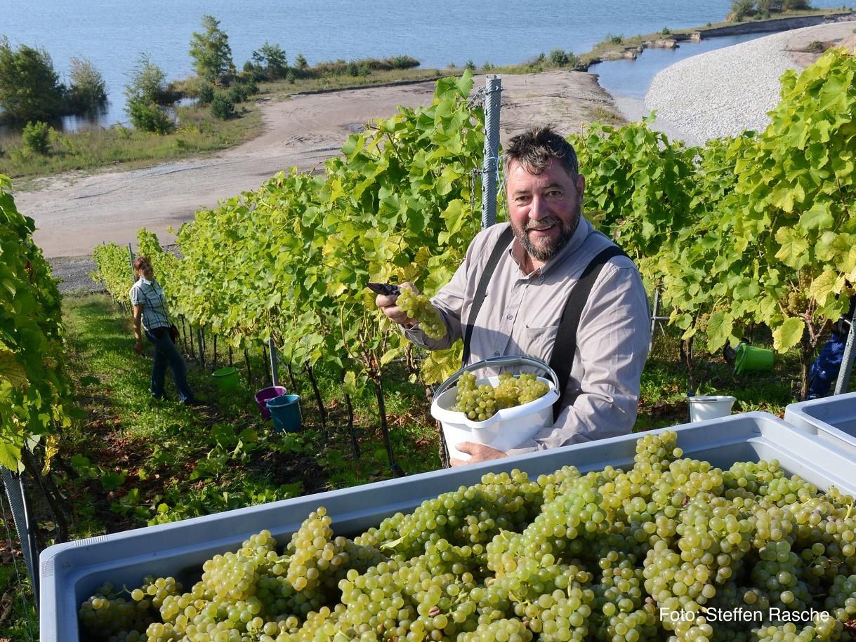 Weinbau Dr. Andreas und Dr. Cornelia Wobar